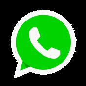 logo wassap